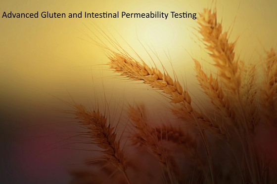 Gluten sensitivity with Intestinal Permeability lab testing.