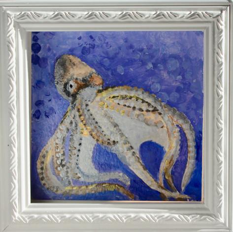 OCTOPUS, Framed