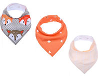 orange fox.jpg