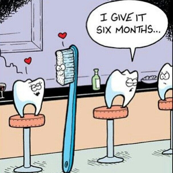 Tooth brush joke comic