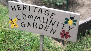 2nd Grade Social Studies Unit Spotlight: A Garden Grows in Ohio