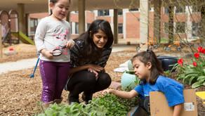 Kindergarten Social Studies Curriculum: Who is here to help me?