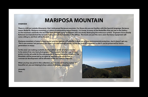 Help save Mariposa Mountain