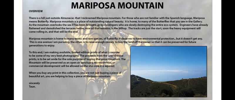Help save Mariposa Mountain