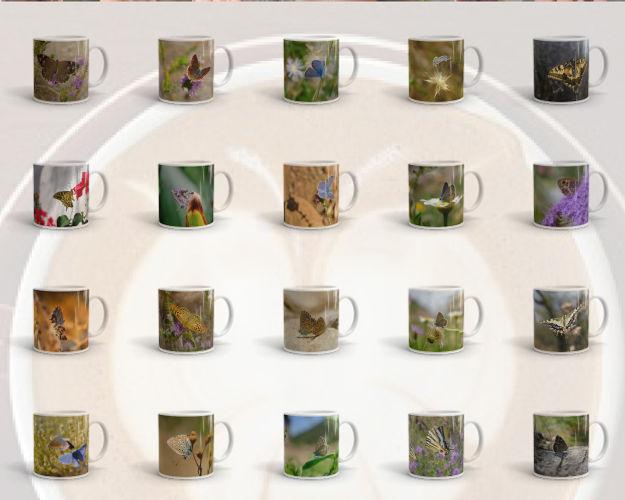 mug-montage.jpg