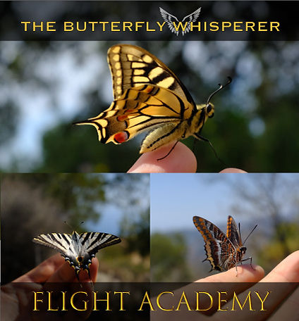 flight-academy-butterfly-whispering-cour