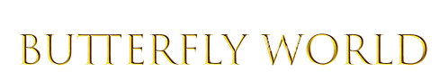 Butterfly-world-bfwings-taun-richards.pn