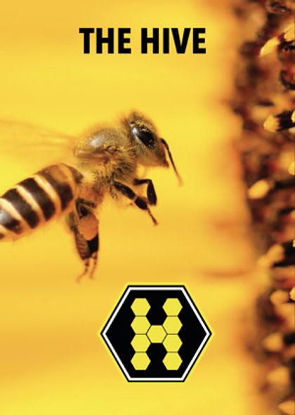 hive-cover-.jpg