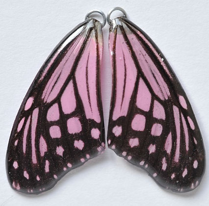 BFW0019 Natural Butterfly WIng Earrings