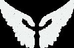 guardian angel wings.png