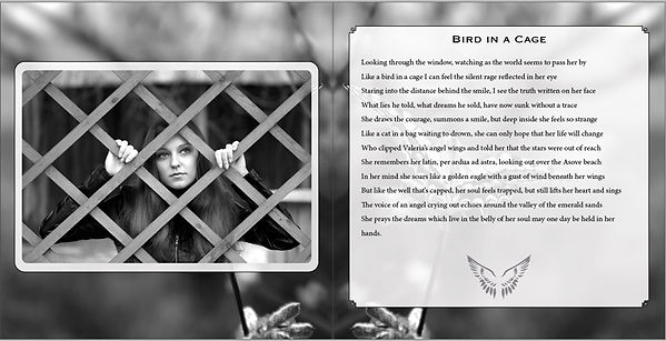 bird-in-a-cage-by-taun-richards-bfwings.