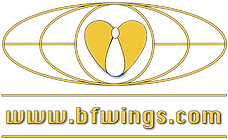 bfwings-universal-logo-orange.png
