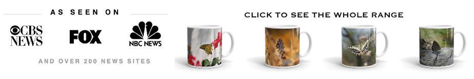 mug-montage-loyalty-rewards-banner.jpg