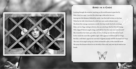 bird-in-a-cage-from-the-book-butterfly-w