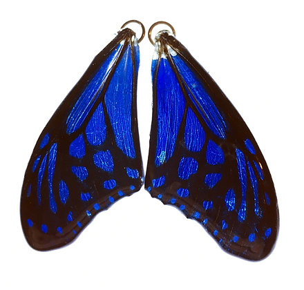 BFW0032 Natural Butterfly WIng Earrings