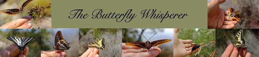 the-butterfly-whisperer-banner.jpg