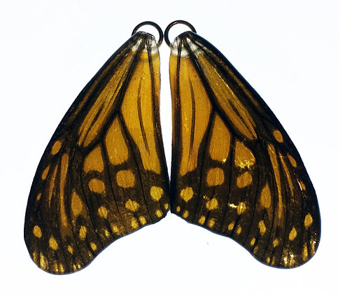 BFW0068 Natural Butterfly Wing Earrings