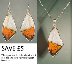 Great Orange Tip Solid silver earrings and pendant