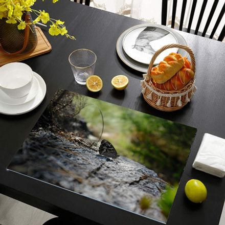 glass-table-mats-spotlight-small.jpg