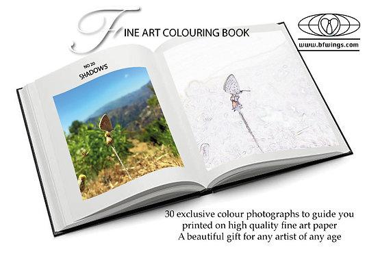 Fine Art colouring in book