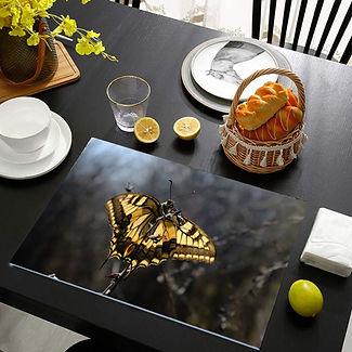 glass-table-mats-small.jpg