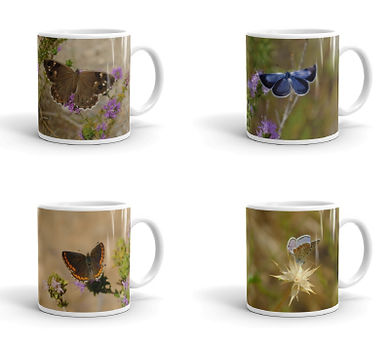 coffee-mugs-small.jpg