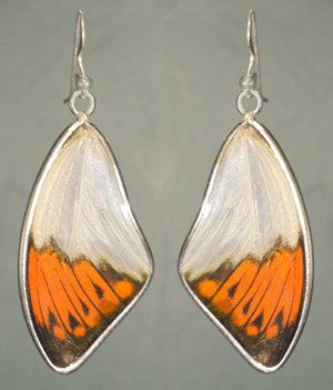Great Orange Tip Solid silver framed earrings