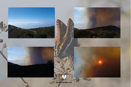 fire-on-mariposa-mountain.jpg