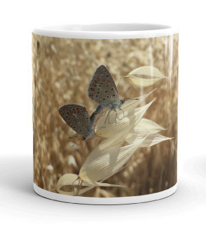 Four seasons white gloss 11oz mug SUMMER