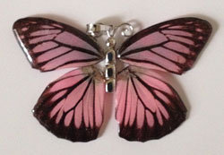 Full wing pendant