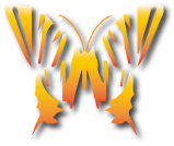 butterfly-wings-the-golden-butterfly-log