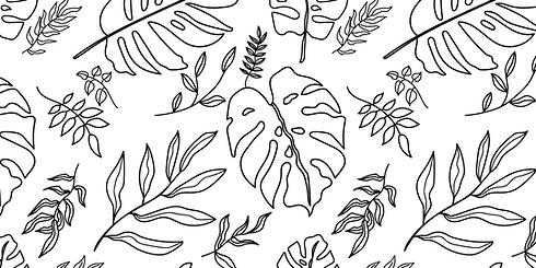botanical-line-drawing-white-background.