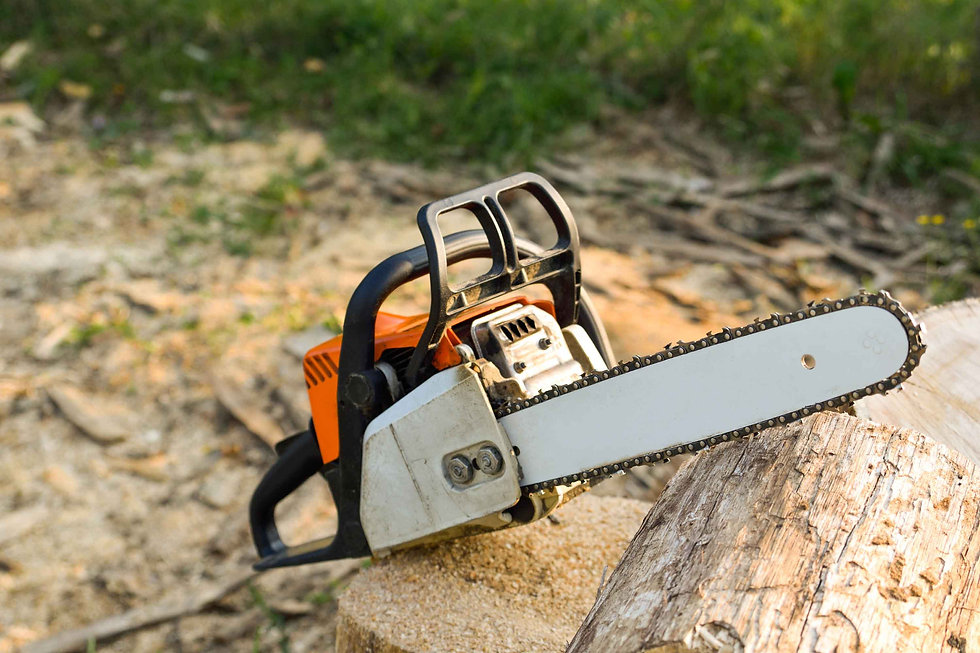 Chainsaw resting on wood