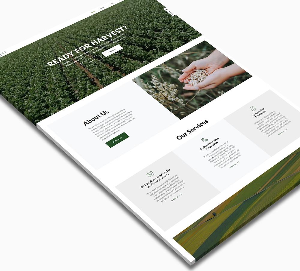 Finance of Food - Wix Website - Christy Evans Design