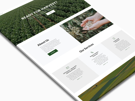 Site Redesign: Finance of Food