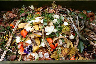 synergis-zero-waste-recyling-compost-2.j