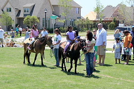 two-young-girls-riding-ponies-at-phillip