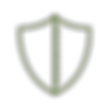 Icon of shield representing integrity