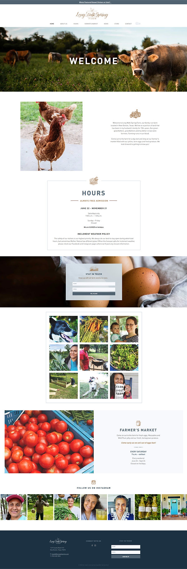 Home page of a Wix website for Long Walk Spring Farm in New Boston, TX, designed by Christy Evans