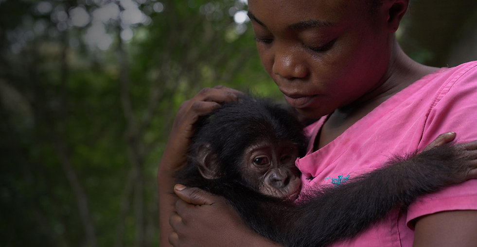 young-caregiver-with-baby-bonobo.jpg