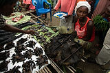 woman-selling-bonobo-bushmeat-at-congo-m