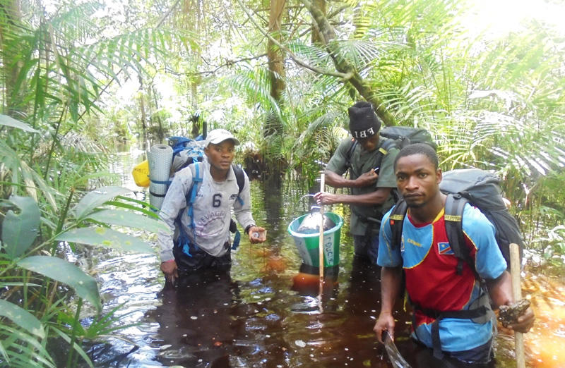 ecoguards-monitoring-team-wading-in-rive