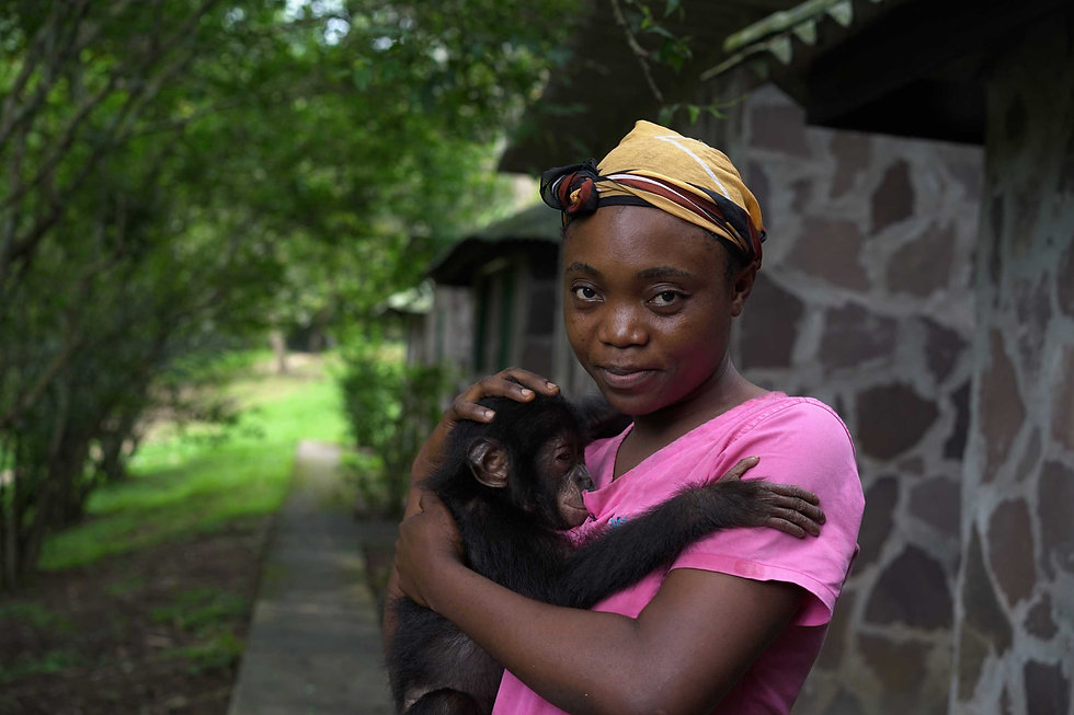 young-caregiver-with-baby-bonobo-2.jpg