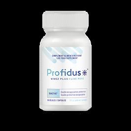 Profidus_3D.png
