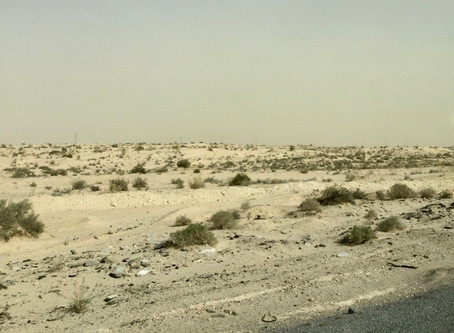 Into A Dust Storm