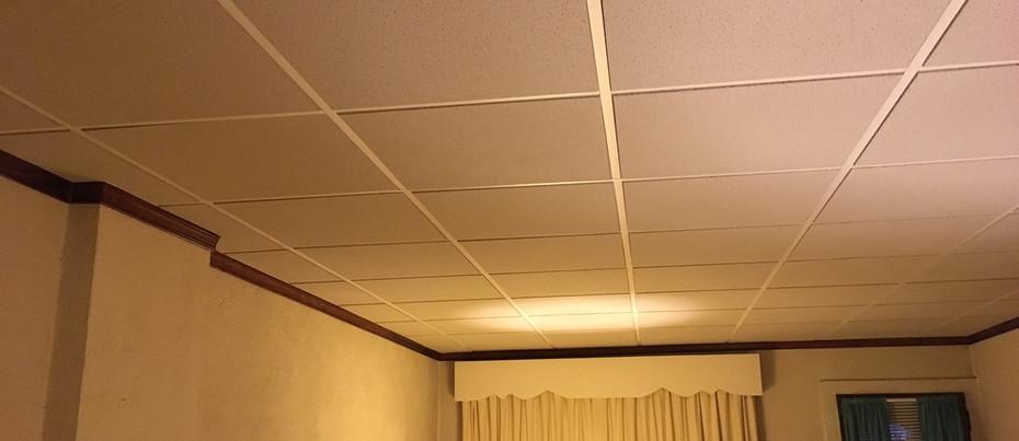 Gray Tegular Drop Ceiling