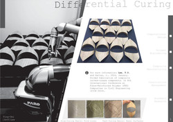 Differential Curing