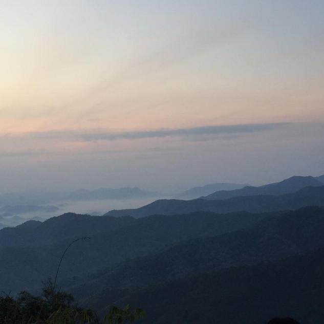 Thailand soapnuts Hills dawn