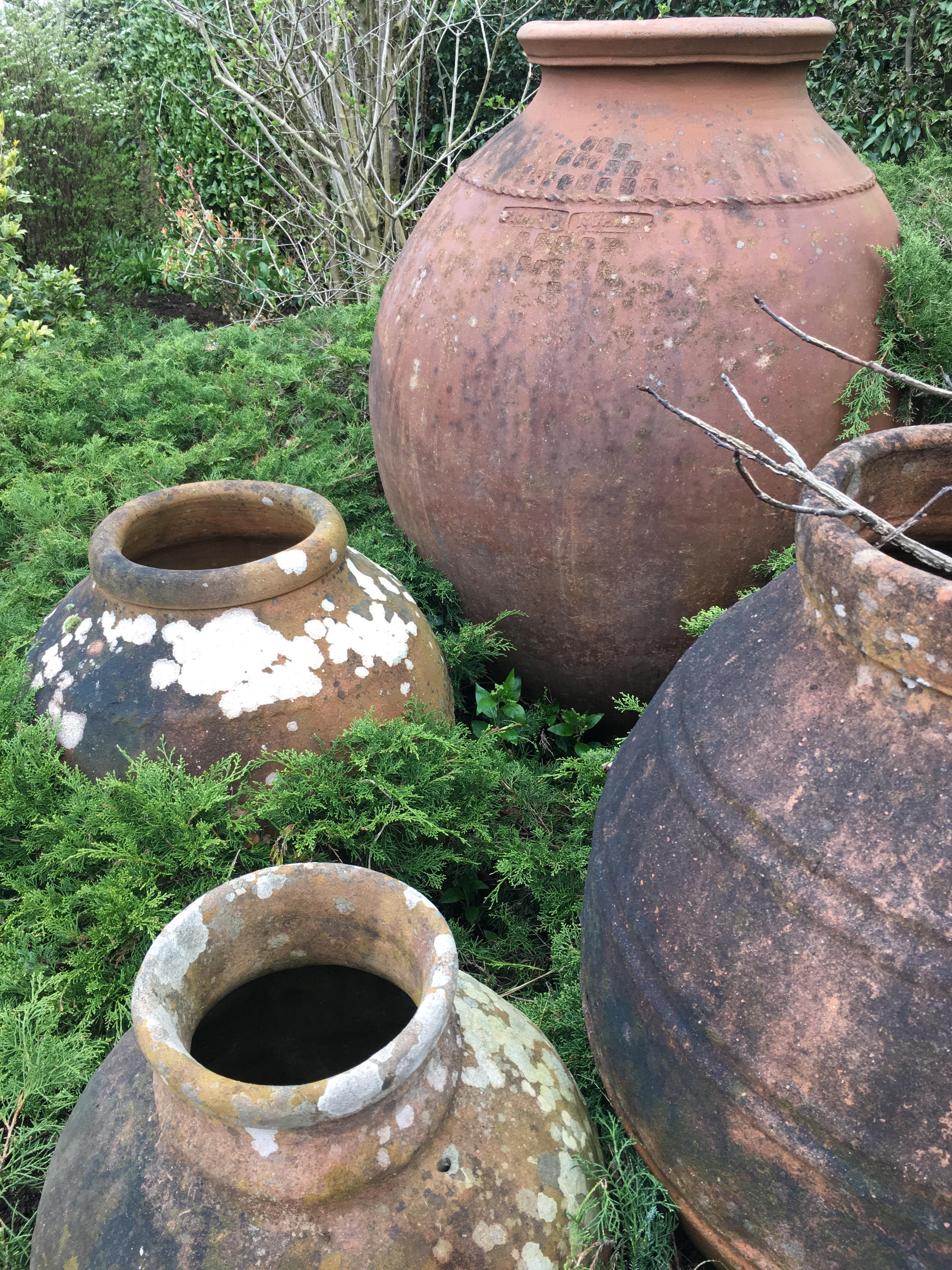 Huge garden urns