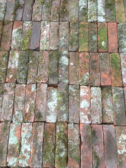 Fabulous old bricks